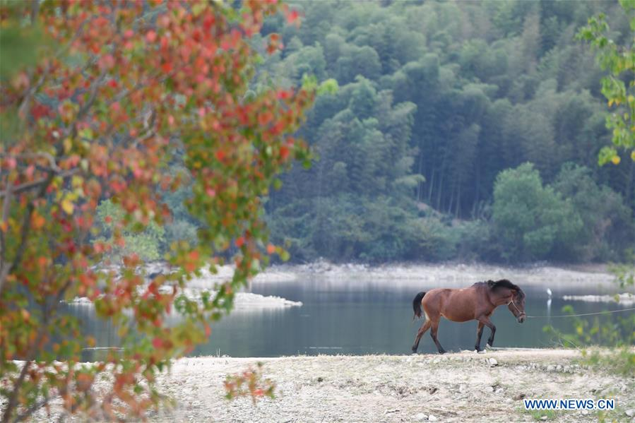Autumn scenery in east China's Anhui