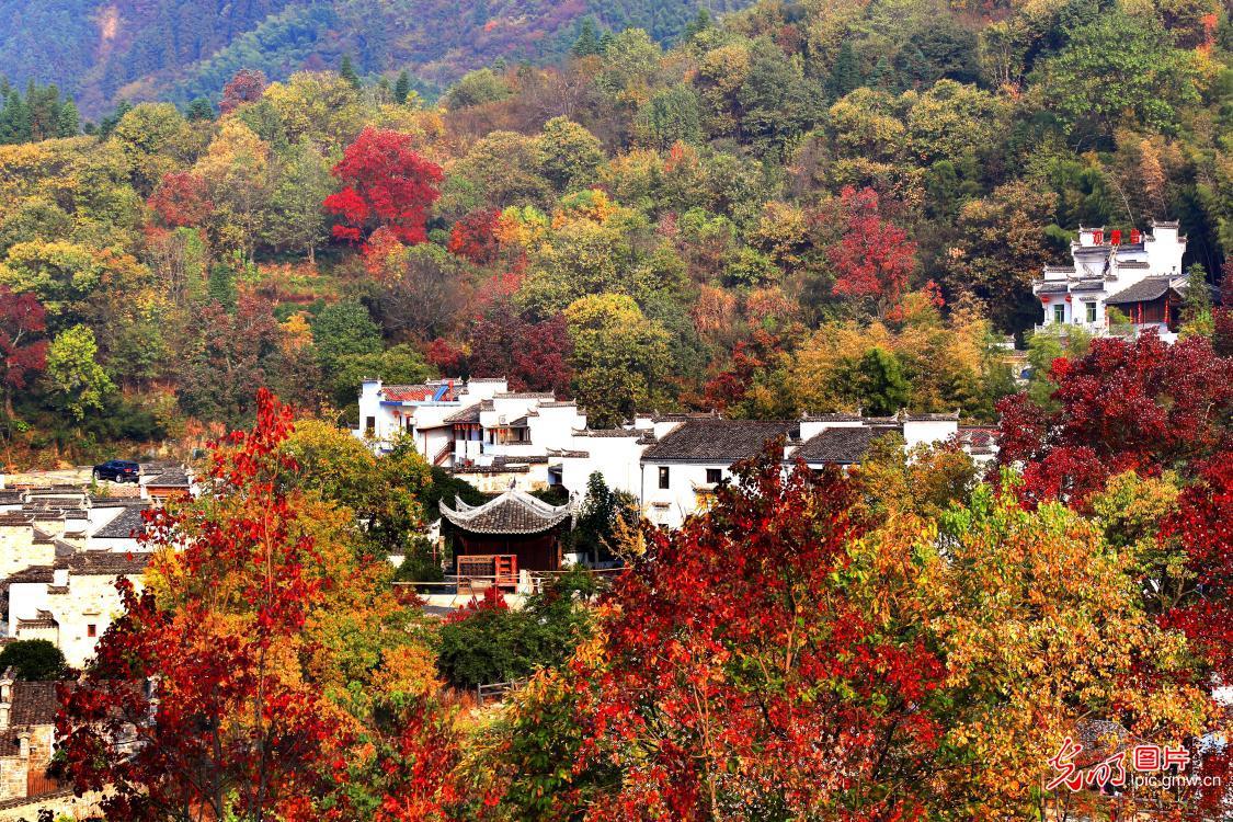 Autumn scenery of Tachuan, E China's Anhui