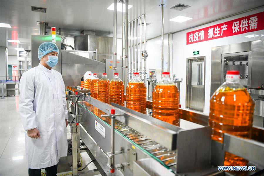 CHINA-HEILONGJIANG-OIL AND GRAIN ENTERPRISE-PRODUCTION RESUMPTION (CN)