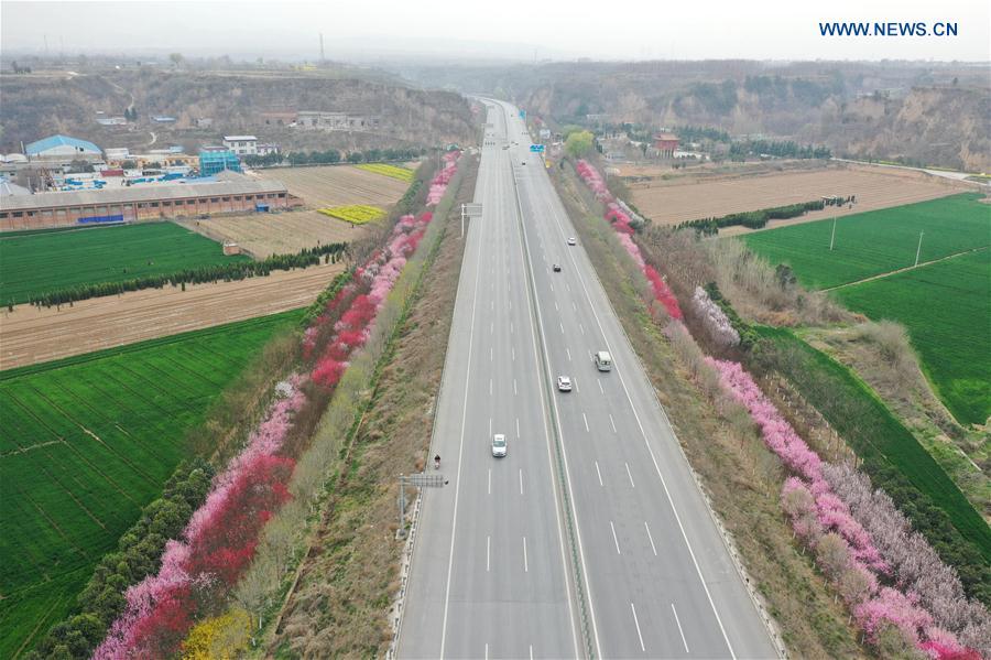 CHINA-HENAN-XINGYANG-SPRING-BLOSSOMS (CN)