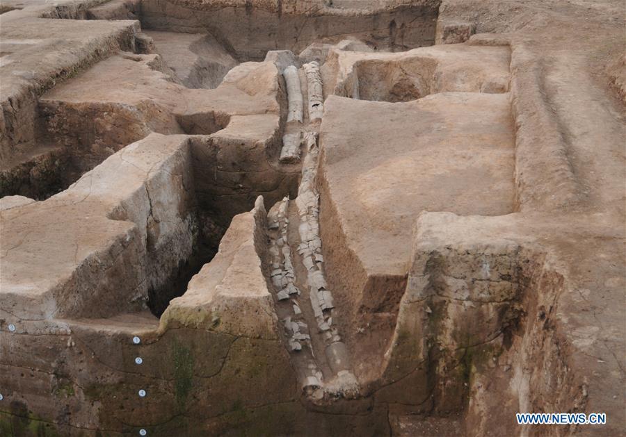 CHINA-HENAN-HUAIYANG-ARCHAEOLOGY (CN)