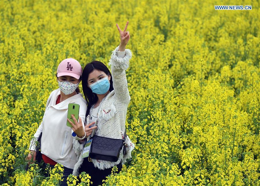 CHINA-HENAN-PINGDINGSHAN-COLE FLOWER (CN)