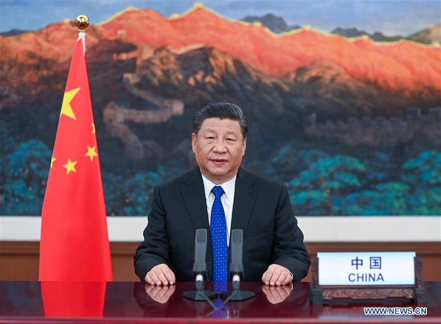 CHINA-BEIJING-XI JINPING-WHA-OPENING-SPEECH (CN)
