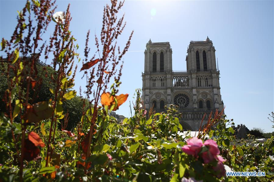 FRANCE-PARIS-NOTRE-DAME CATHEDRAL-PARVIS-REOPENING