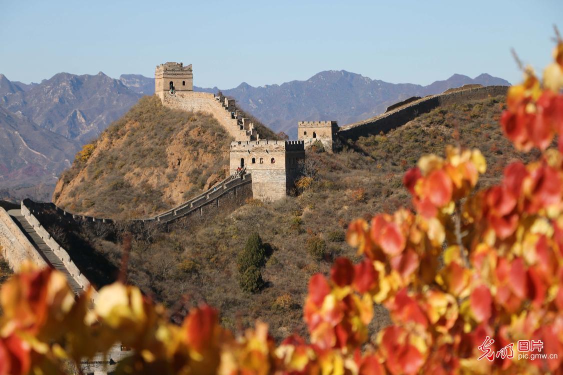 Fall color on Jinshanling
