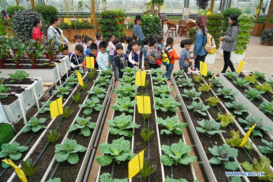 People visit modern agricultural industry park in Jiangsu
