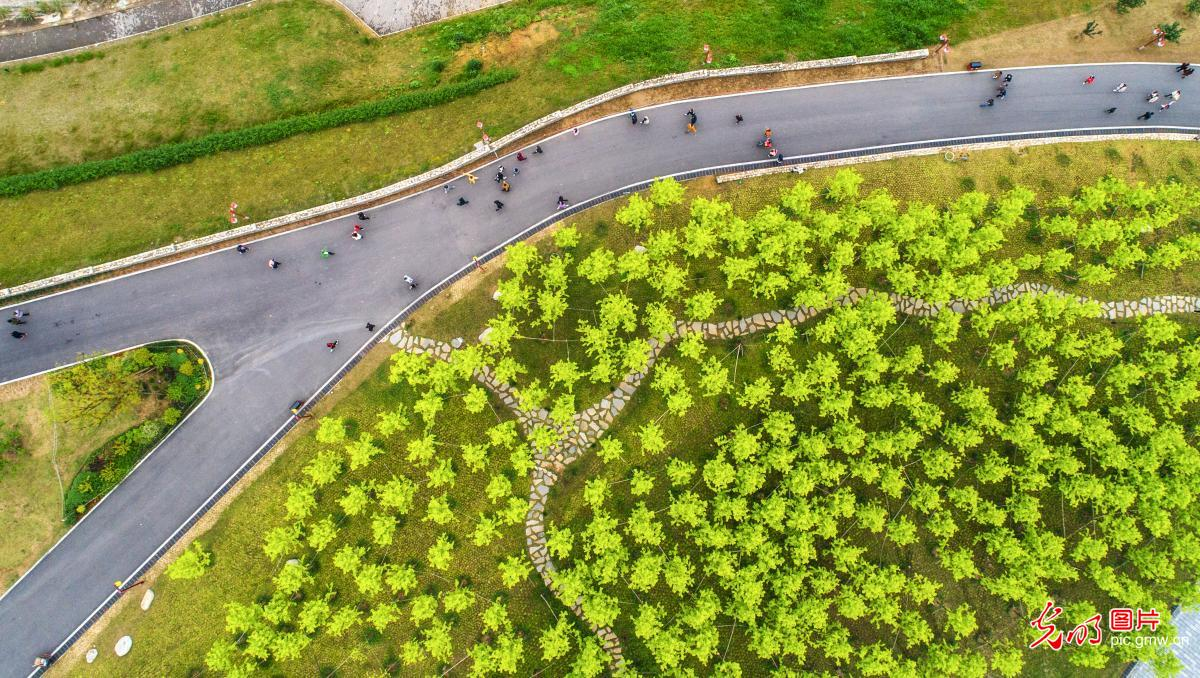 Beautiful spring scenery of Zigui, C China's Hubei