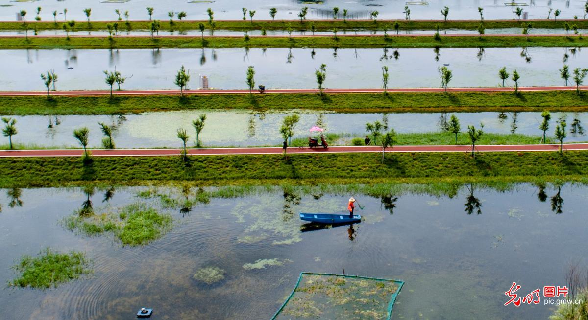 Ecological environment improved in Fenyi, E China's Jiangxi