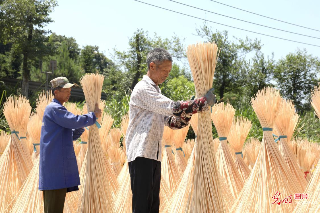 Villagers drying semi-finished bamboos in E China's Jiangxi Province