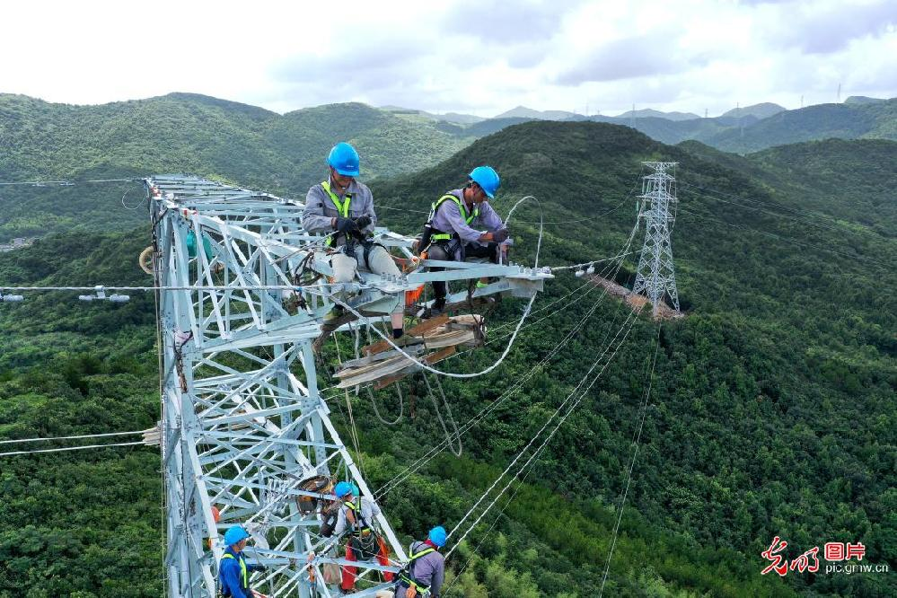 Effective response made to minimize typhoon effects on transmission towers