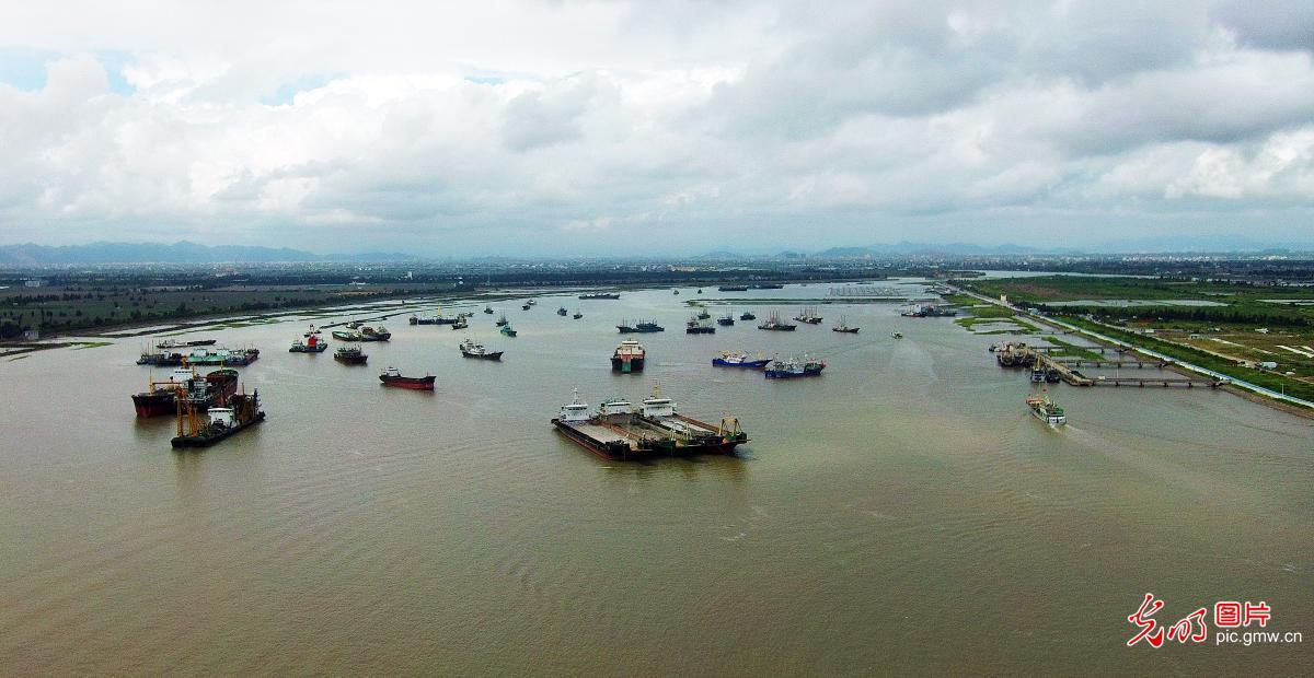 浙江台州:渔船回港避台风