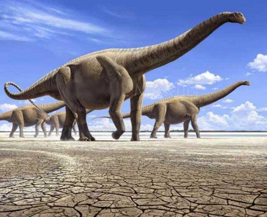 解密恐龙灭绝史 世界的霸主为何陨落图片 59382 550x448