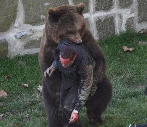 惊险!全球动物袭击人类的恐怖瞬间(图)