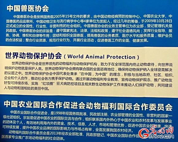 世界动物保护协会在中国务实科普动物福利概念