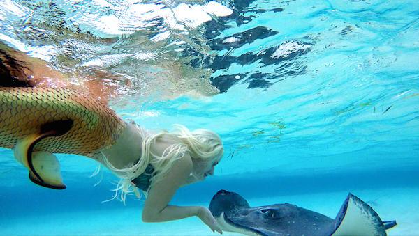 职业 美人鱼 水下展妩媚身姿 鱼尾重54斤