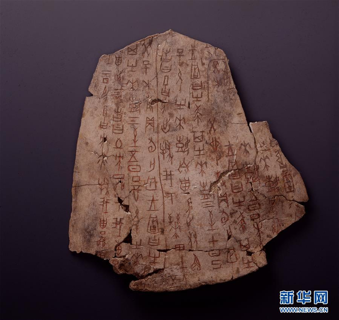 (文化)(4)国博将首次大规模展示馆藏甲骨