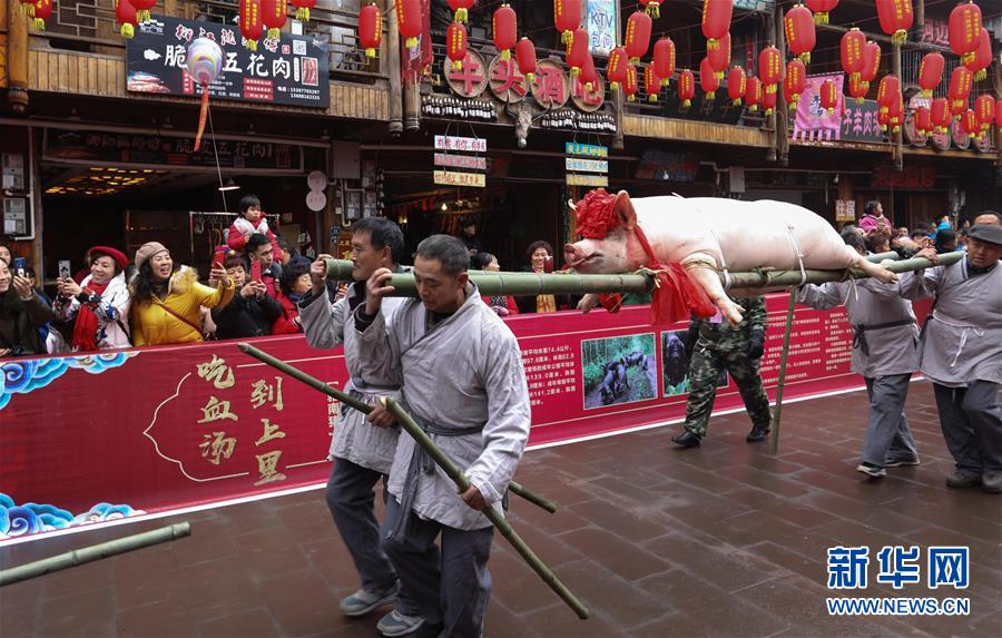 """(社会)(1)四川上里古镇:喜庆""""年猪节"""""""