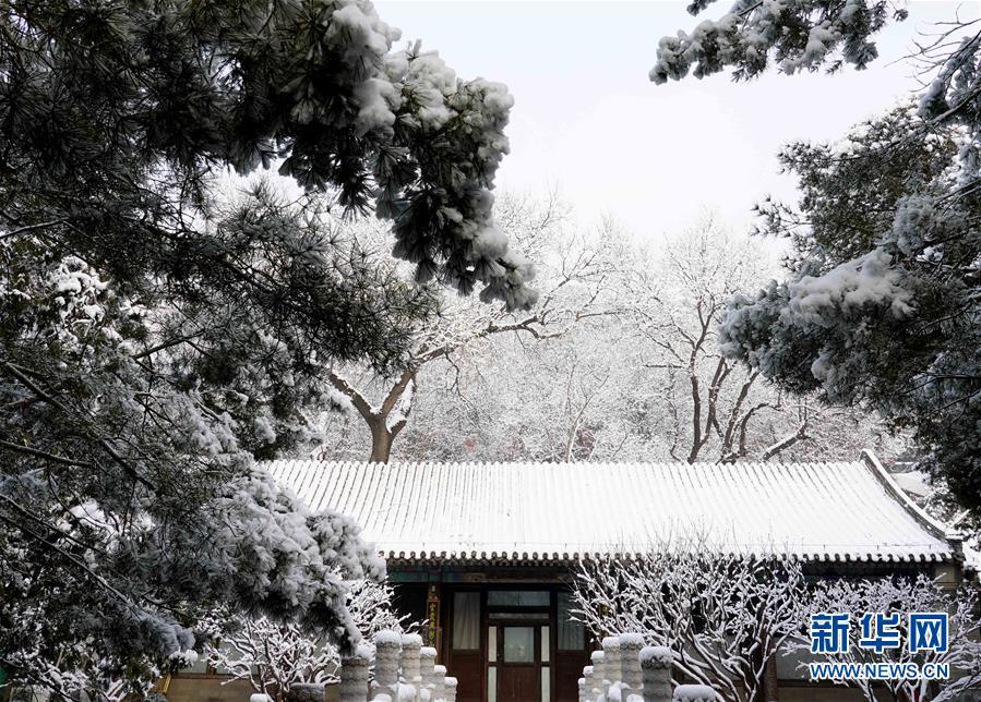 (环境)(8)雪后颐和园美如画