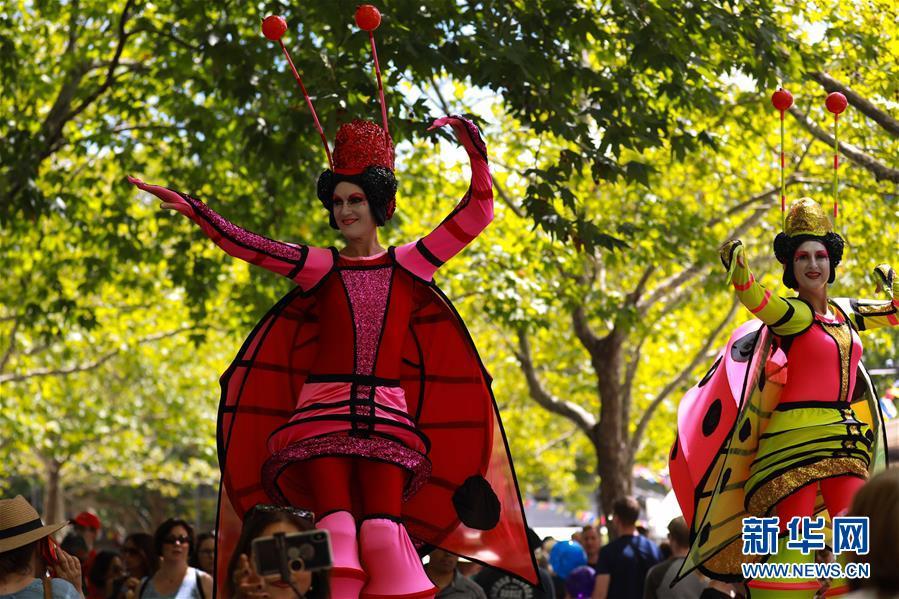 (XHDW)(4)澳大利亚国家多元文化节掠影