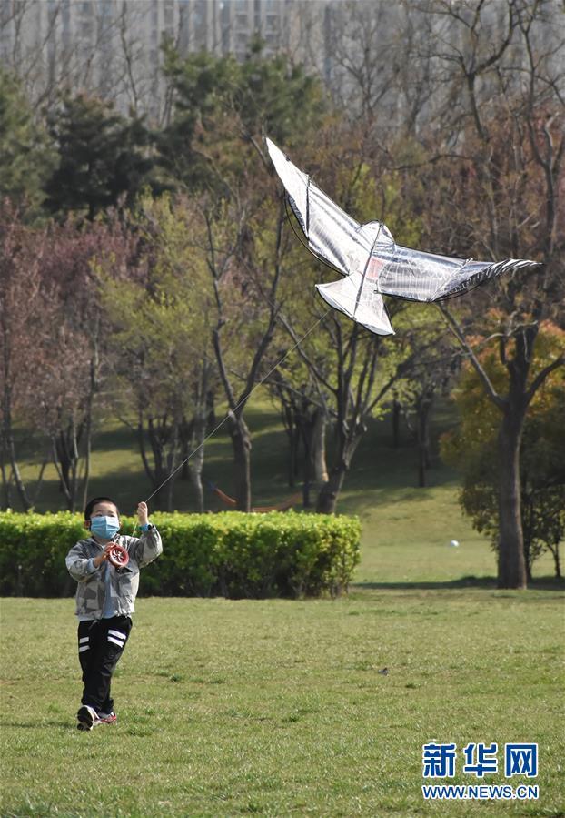 (社会)(6)忙趁春风放纸鸢