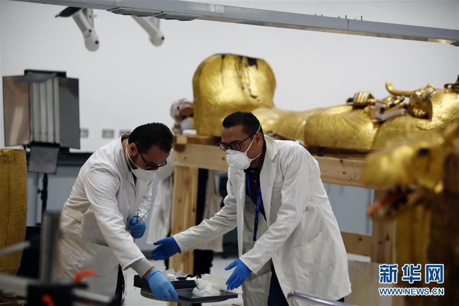 """(国际疫情)(2)""""我在埃及修文物"""""""