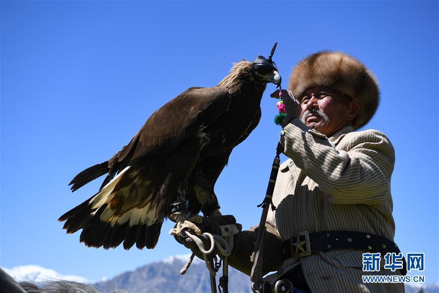 """(图片故事)(1)远山的""""鹰语者"""""""