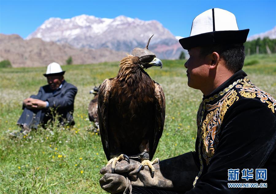 """(图片故事)(3)远山的""""鹰语者"""""""