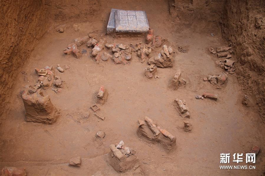 (图文互动)(5)陕西西咸新区发现隋代王韶家族墓园