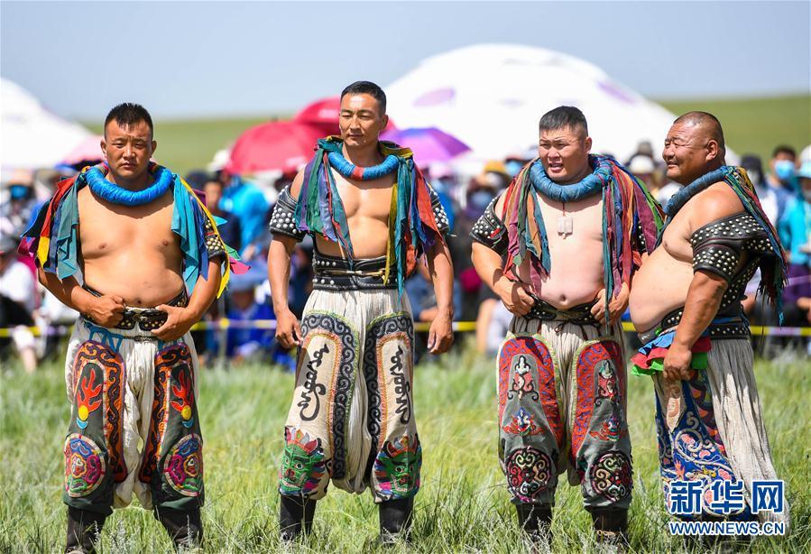 (社会)(6)欢聚草原那达慕