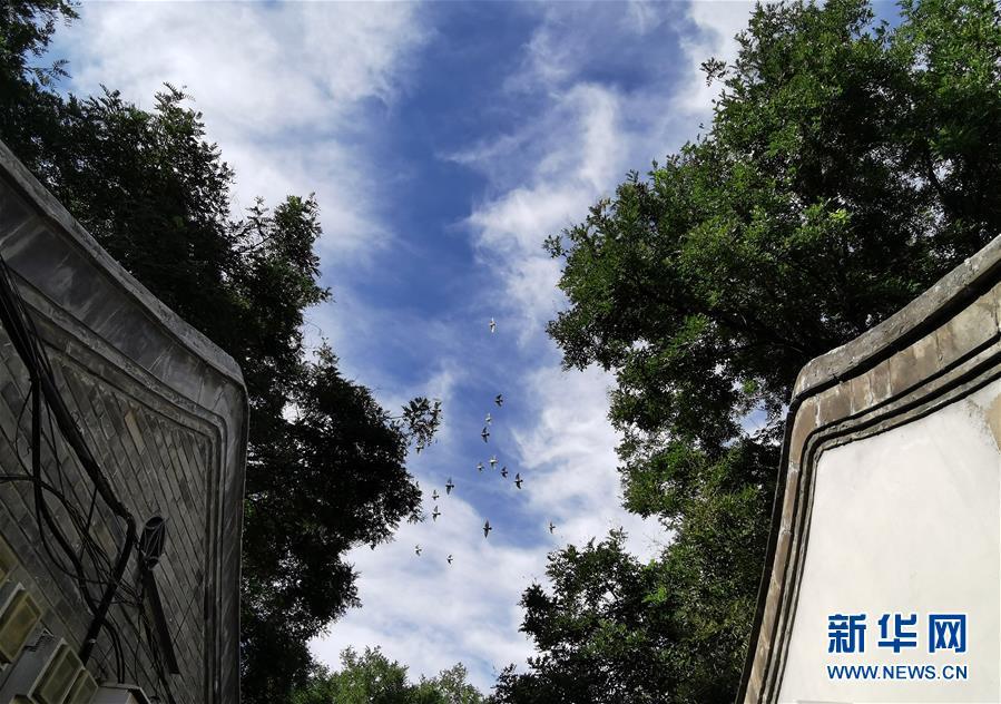 (环境)(2)北京迎来晴好天气