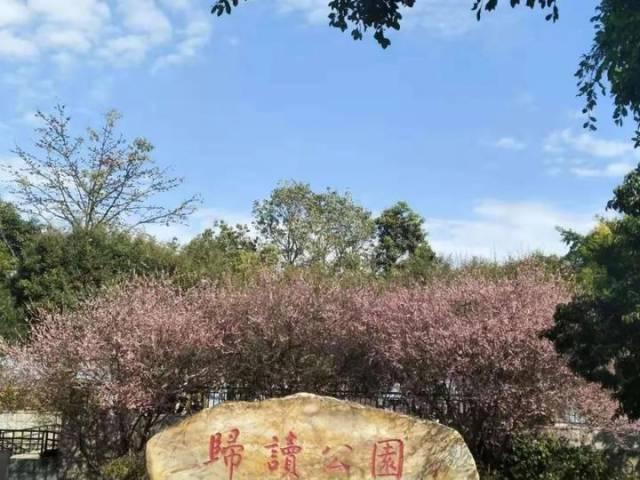 朱国城 | 梅花端的种梅州(辘轳体)