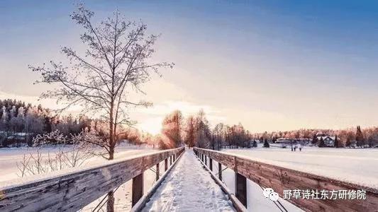 【野草诗社东方研修院】庚子回眸之九——何云春诗词20首
