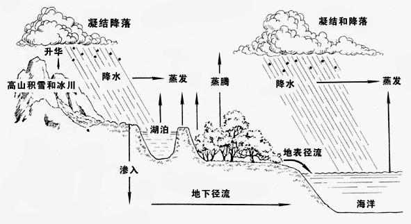 水循环示意图