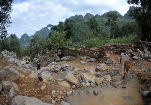 广西凌云暴雨引发33处地质灾害 紧急转移1400多名群众