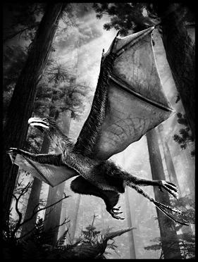 """我国科学家发现长着""""蝙蝠翅膀""""的奇翼龙"""