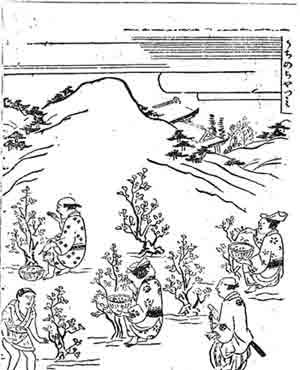 手绘茶叶设计高清图片