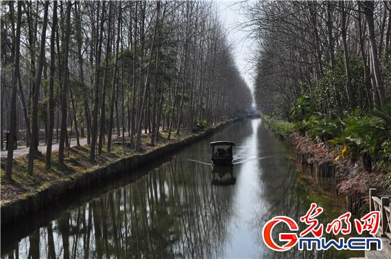 【新常态 光明论】治水引领绿色发展 谱写美丽中国